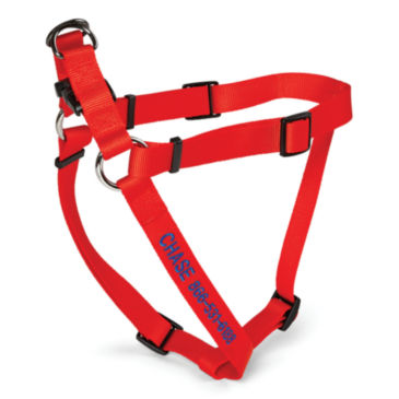 Personalized Adjustable Harness & Leash -