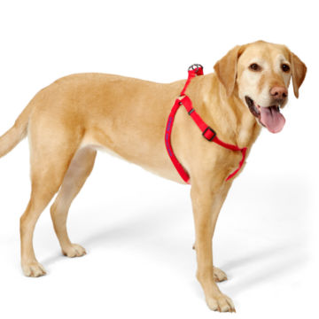 Personalized Adjustable Harness -  image number 1