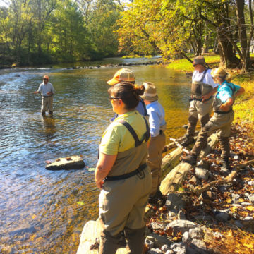 Boiling Springs, Pennslyvania Fly-Fishing School / 1-Day School -  image number 5
