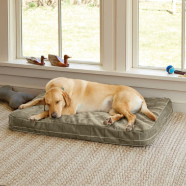 ToughChew®  Memory Foam Platform Dog Bed -