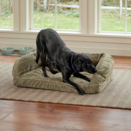 Dog chewing on his dog bed