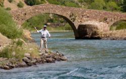 angler standing near stone bridge next to river
