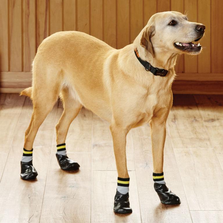 Dog Traction Socks -  image number 0