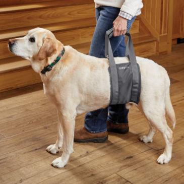 Rear Dog Lift -