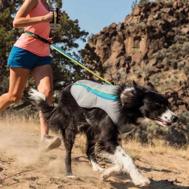 Ruffwear®  Swamp Cooler Dog Vest -  image number 0