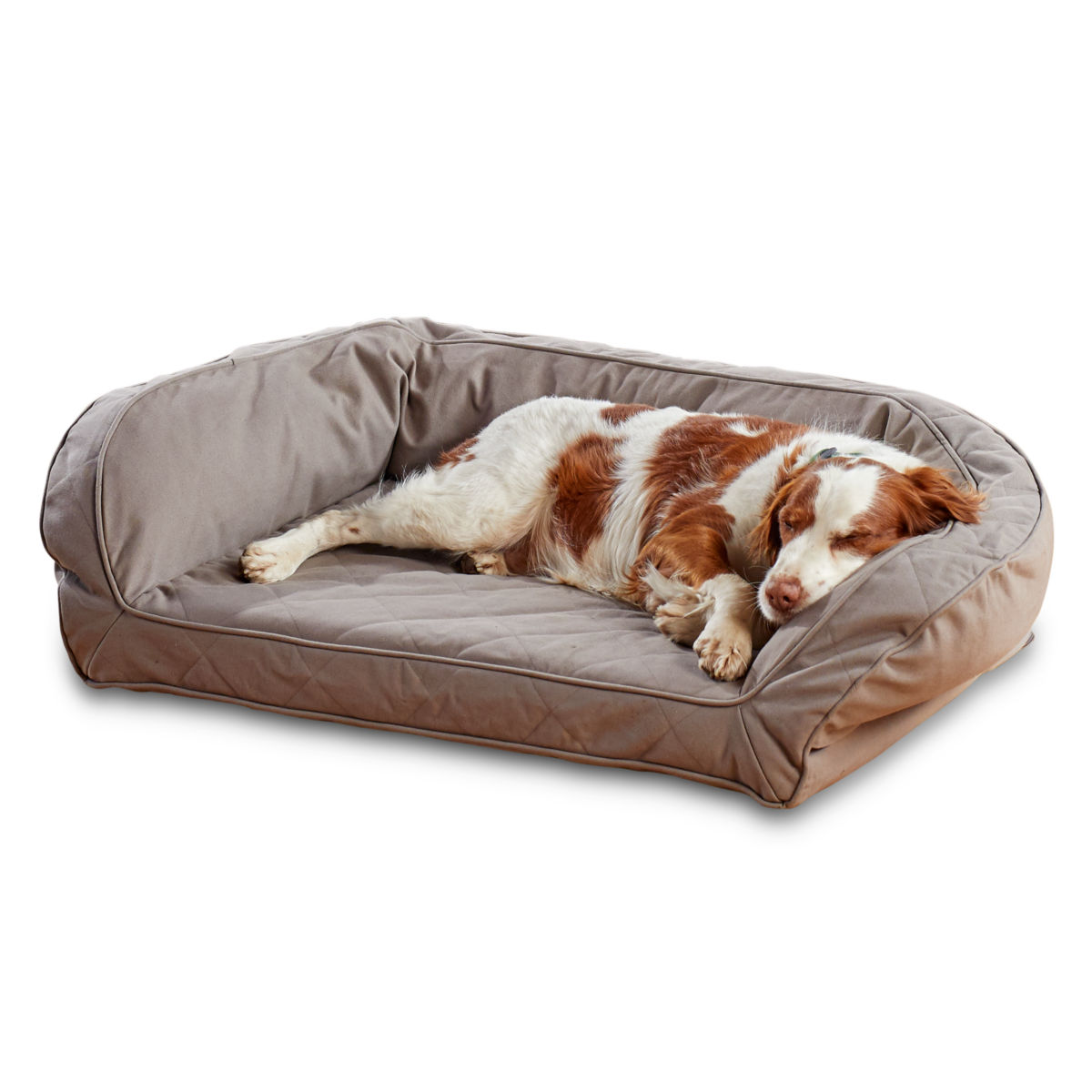 Earth-Friendly Bolster Dog Bed - KHAKIimage number 0