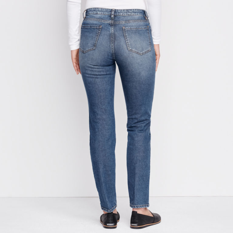 1856 Stretch Denim Skinny Jeans -  image number 2