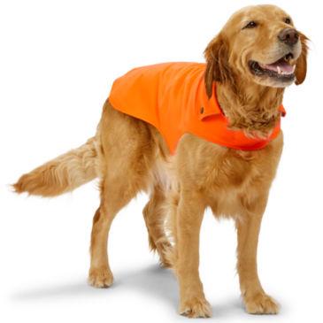 Softshell Dog Jacket -