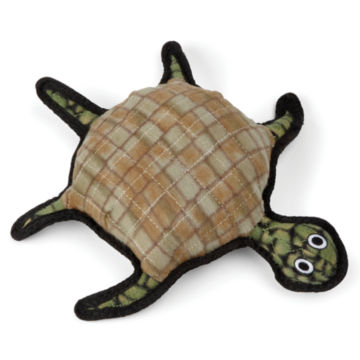 Burtle the Turtle -  image number 0