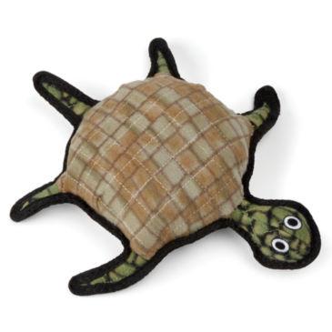 Burtle the Turtle -