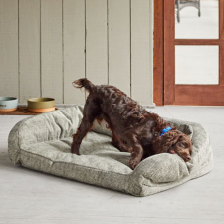 Dog trying to destroy a ToughChew bed