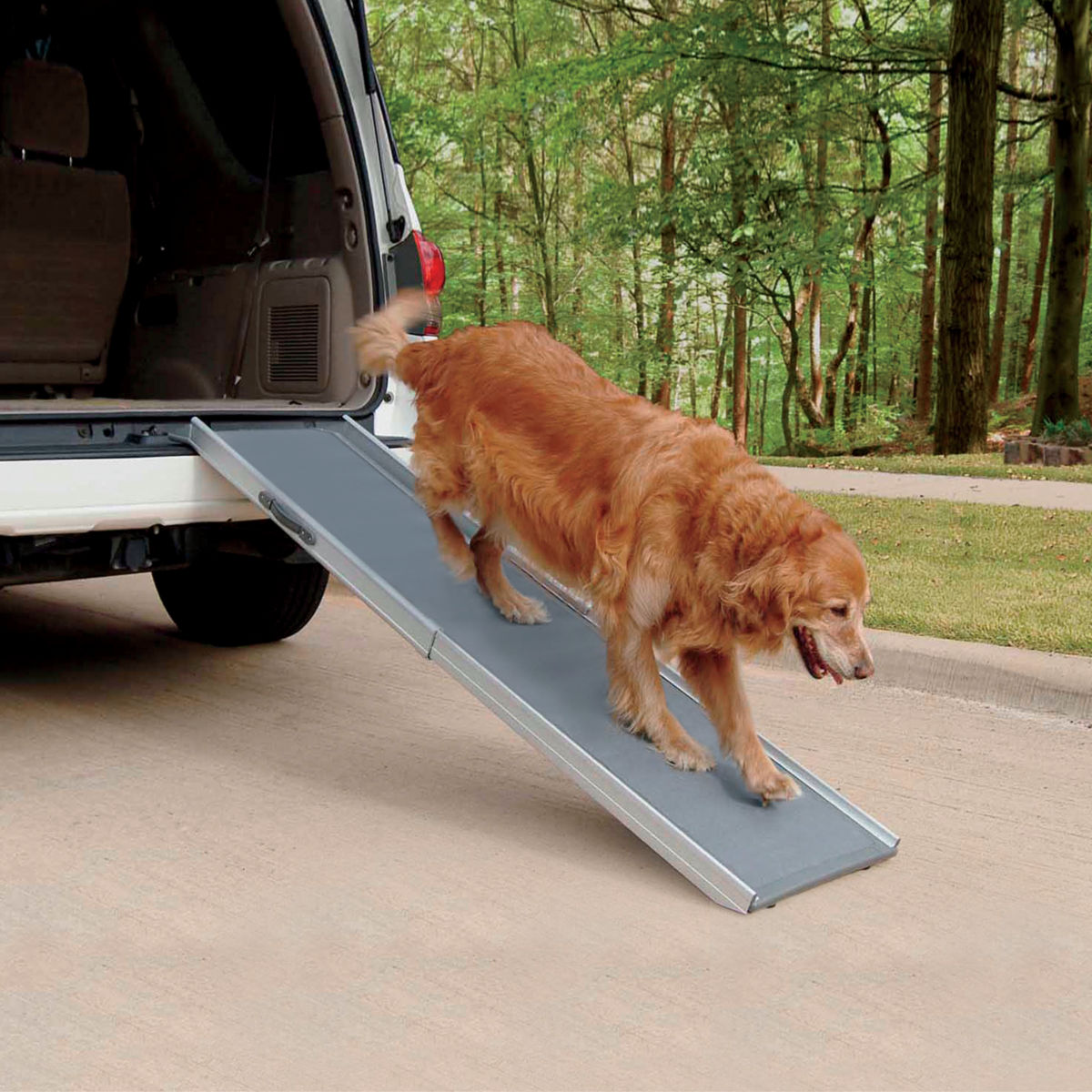 Super-Lightweight Pet Ramps - image number 0