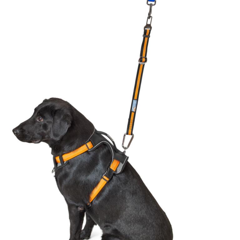 Kurgo® Seatbelt Buckle Dog Tether -  image number 1