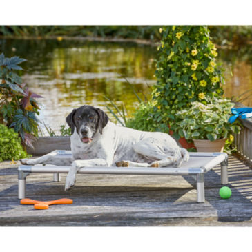 Raised Cooling Dog Bed -