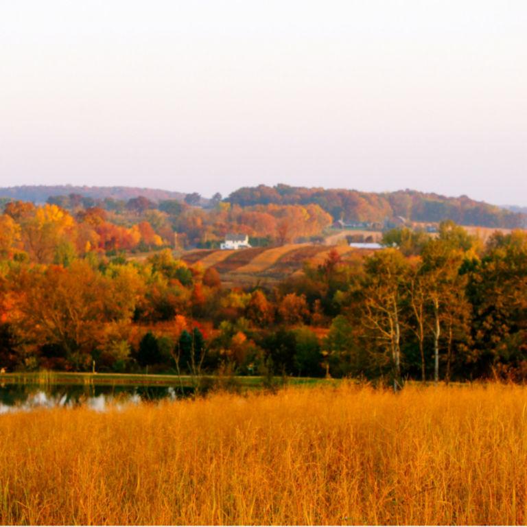 Milford Hills -  image number 1