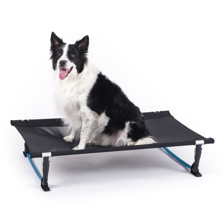 Helinox Elevated Dog Cot - BLACK image number 0