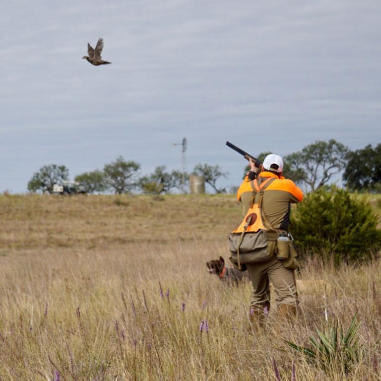 Premier Wingshooting -  image number 1
