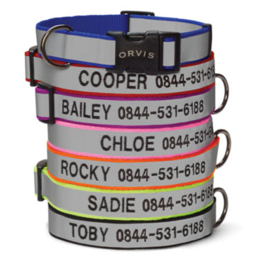 Personalized Reflective Collar & Leash -