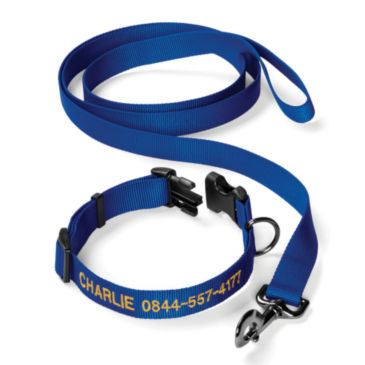 Personalized Adjustable Dog Collar with Leash -