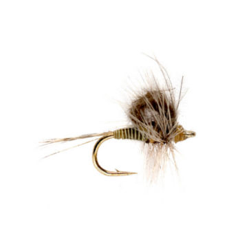 CDC Loopwing Quill Emerger -