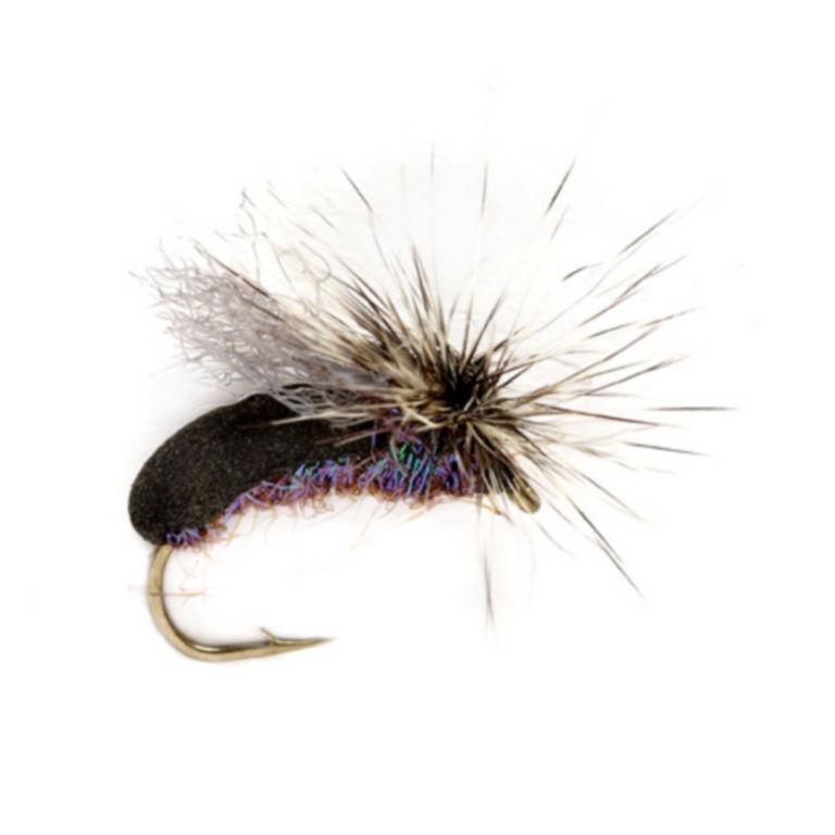 Splitsville Beetle -  image number 0
