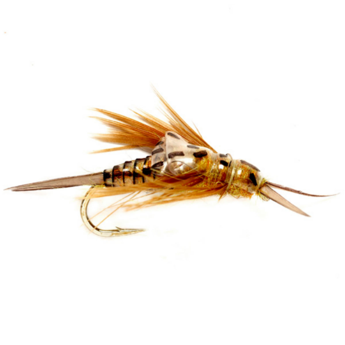 OE Stonefly Nymph - image number 0