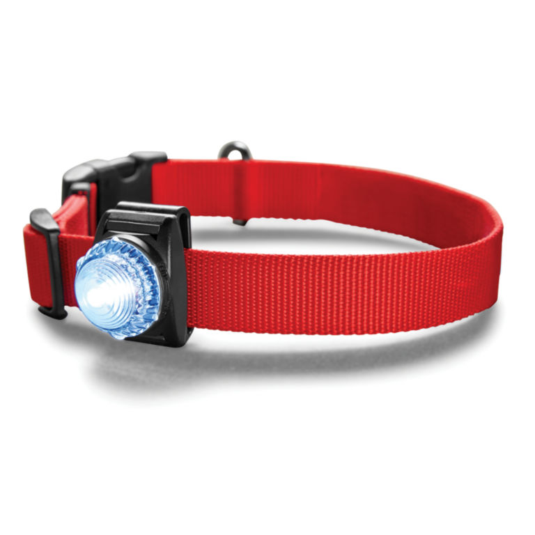 LED Safety Collar Light -  image number 0