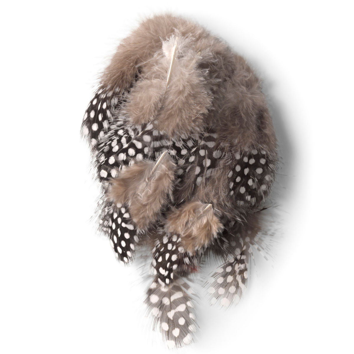 Guinea Feathers - image number 0