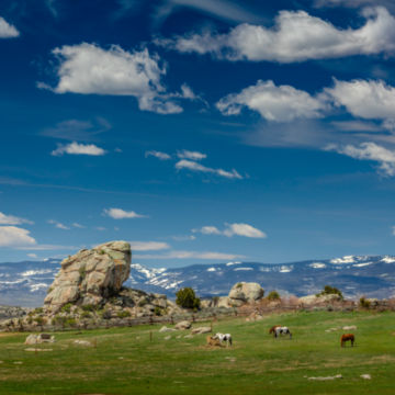 Brush Creek Ranch, WY -  image number 4