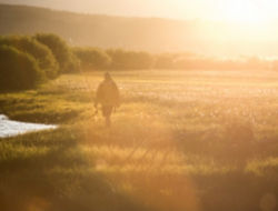 man walking in a field at sunset