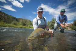 Man holding large trout in a river in Colorado