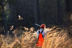 Man shooting at bird