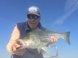 Captain Rene holding a striped bass