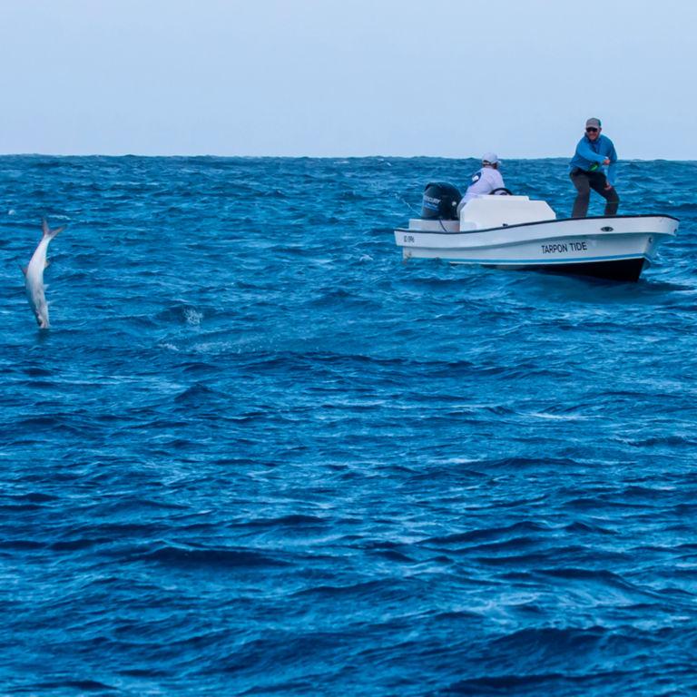 Blue Horizon Fly Fishing -  image number 0