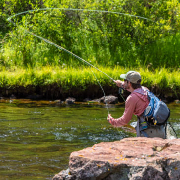 Willowfly Anglers, CO -