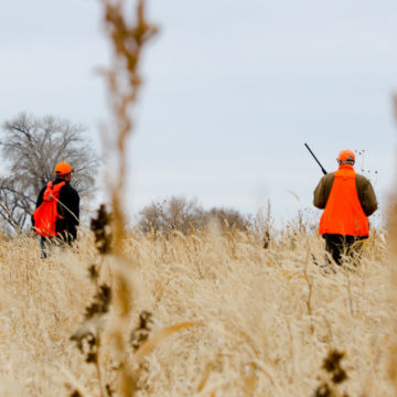 Falcon's Ledge's Pleasant Valley Hunting Preserve -  image number 2