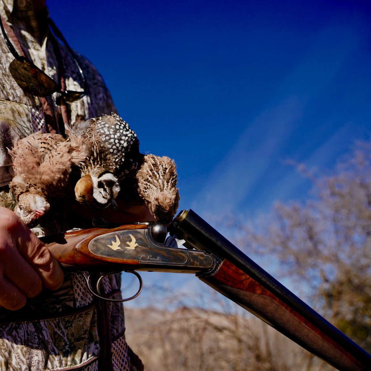 Dave Brown Outfitters - Arizona Quail Guides - image number 0