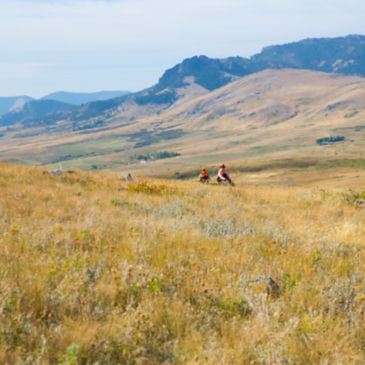 PRO Outfitters' Sharptail Lodge, MT -