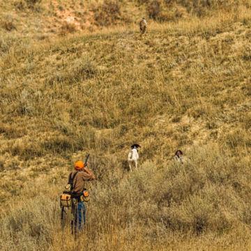 Eagle Nest Lodge, MT -  image number 1