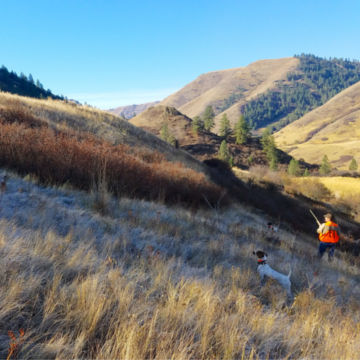 Flying B Ranch, ID -  image number 5
