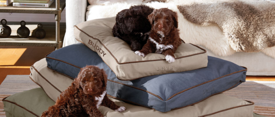 Pile of Orvis Dog beds with puppies climbing on the stack