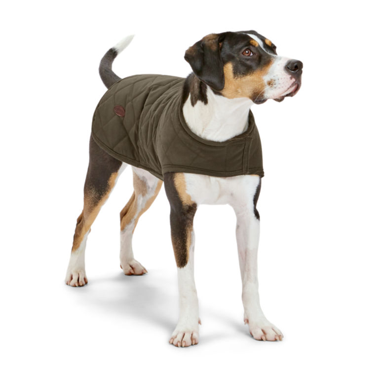 Quilted Waxed Cotton Dog Jacket - GREEN image number 0