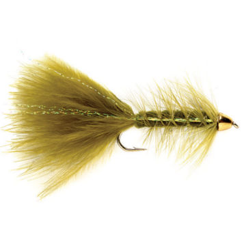 Tungsten Cone Head Woolly Bugger -  image number 0