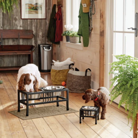 Two dogs eating out of feeders
