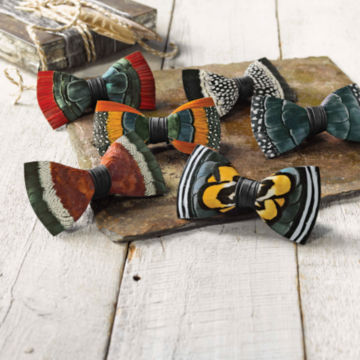 Brackish Feather Bow Ties -  image number 1