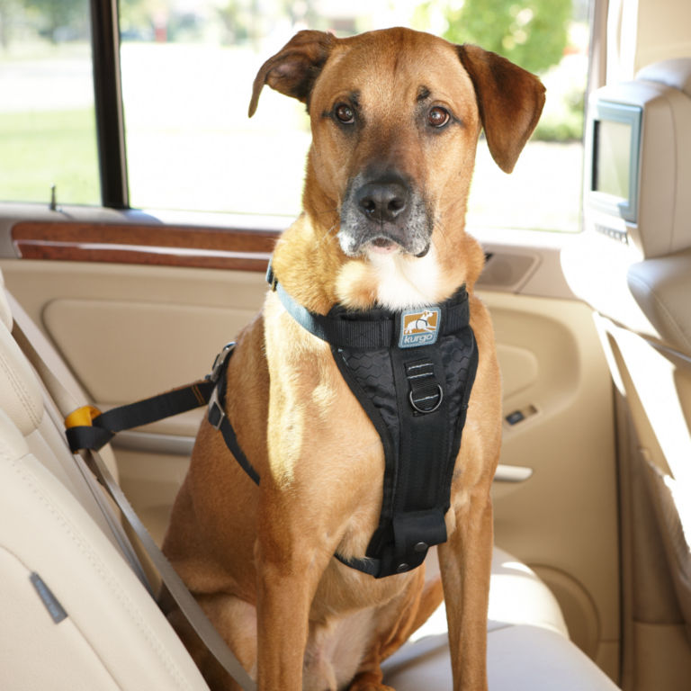 Tru-Fit Smart Harness Car Restraint -  image number 0