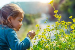 little girl looking at flowers in the grass