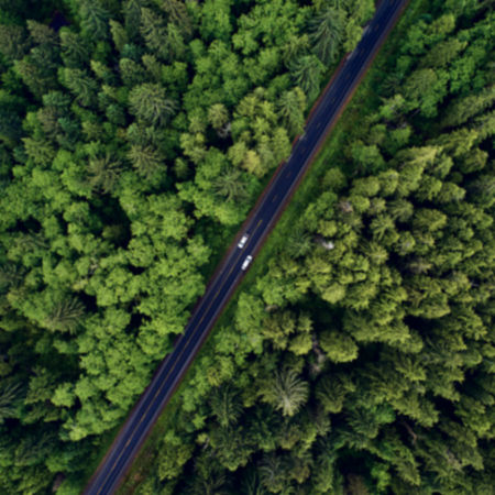 Overhead shot of a pine forest with a road going through the middle of it and two vehicles traveling