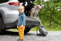 Kid in yellow pants standing by car with dog