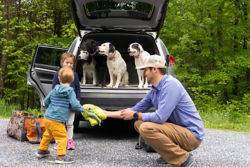 Dad, kids, and dogs packin gup the car